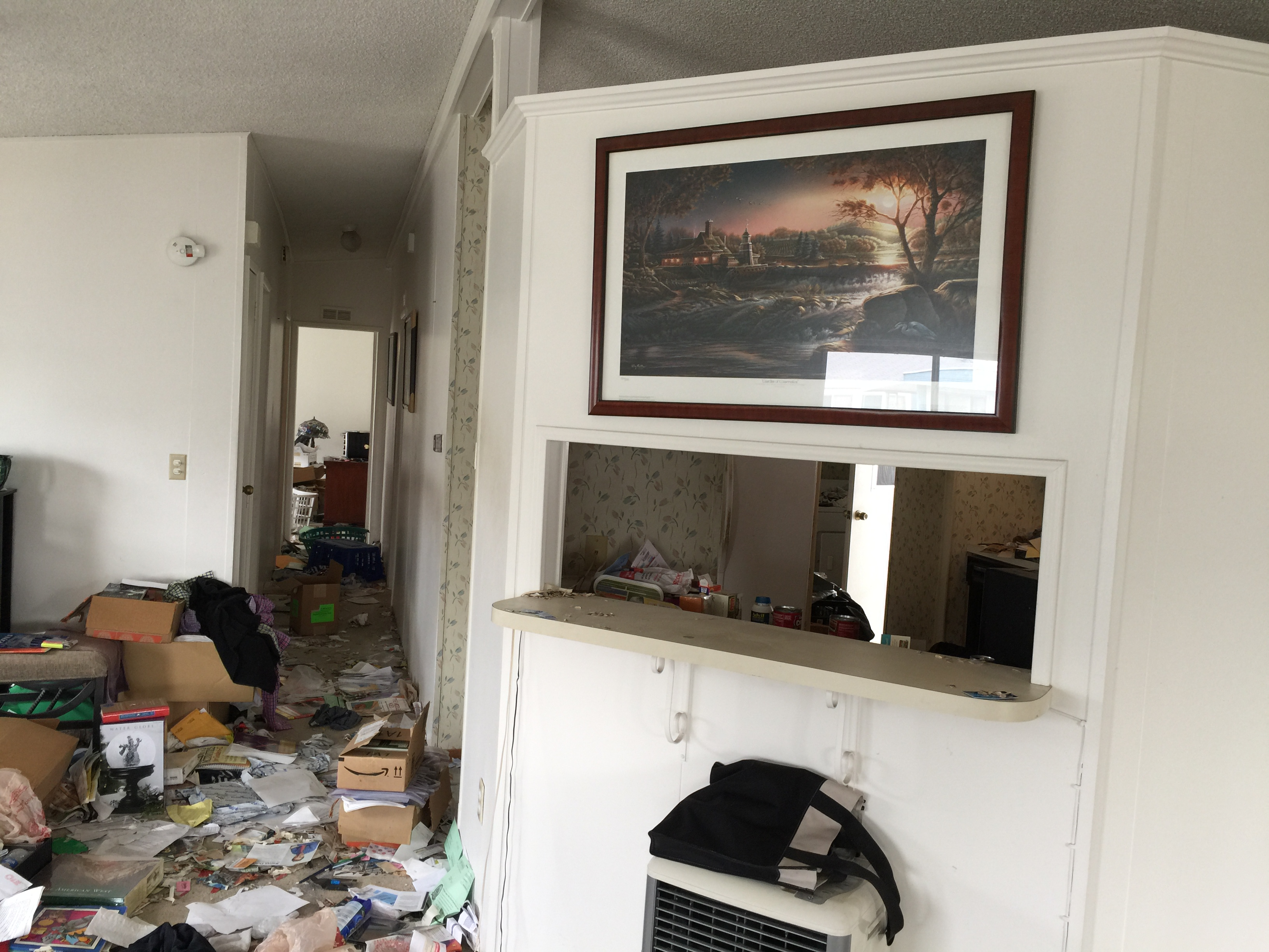 hoarder cleaning beverly hills
